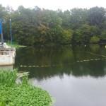 Bariera ochronna dla ryb EBOR na stopniu wodnym w Likowie